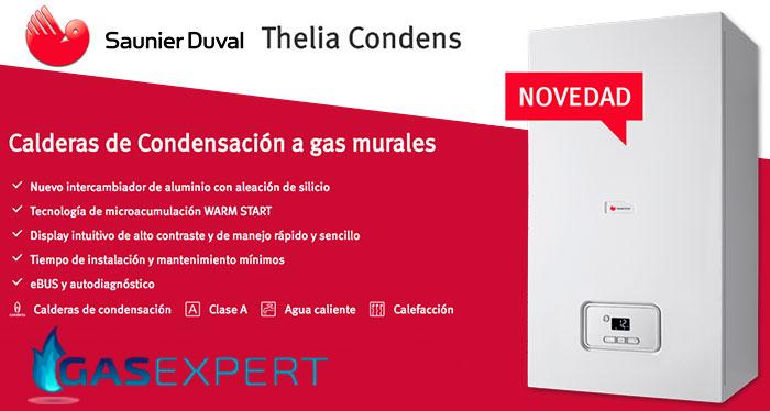 Caldera saunier duval thelia condens - Cual es la mejor caldera de condensacion ...