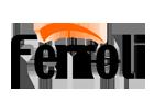 Reparacion de calderas de gas Ferroli en Madrid