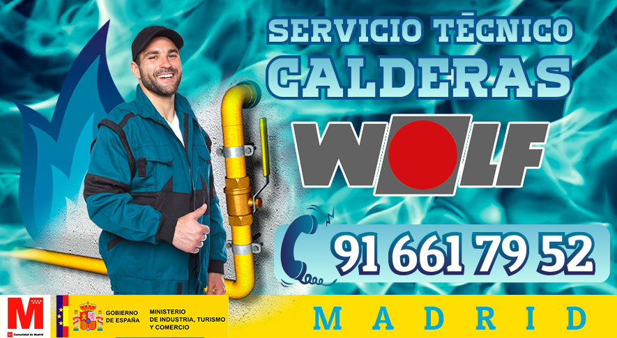Reparación calderas Wolf en Madrid.